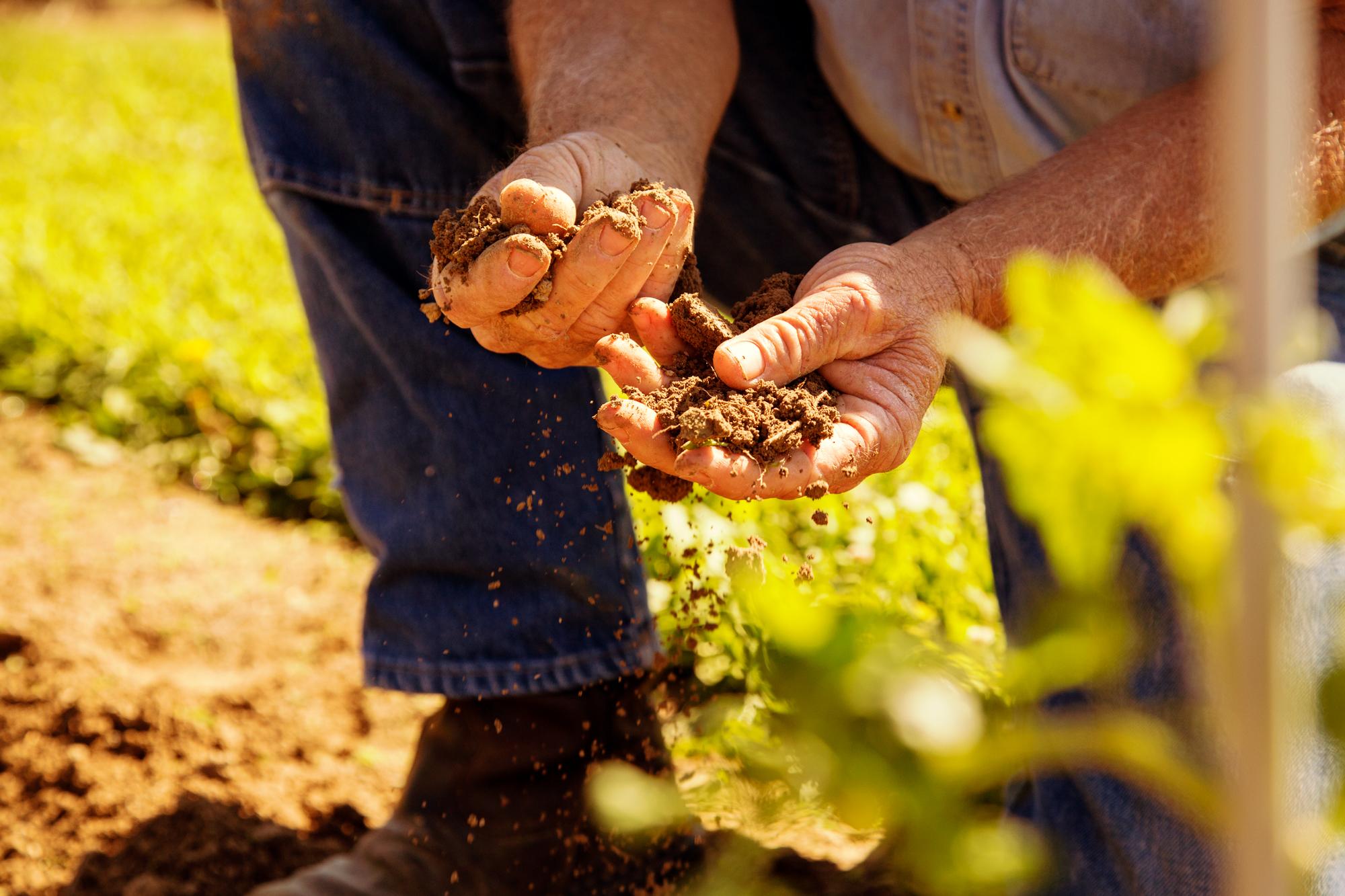 Missouri Agritourism - Missouri Farm Bureau