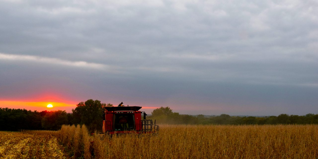 Missouri Farm Bureau COVID-19 Update: Row Crops