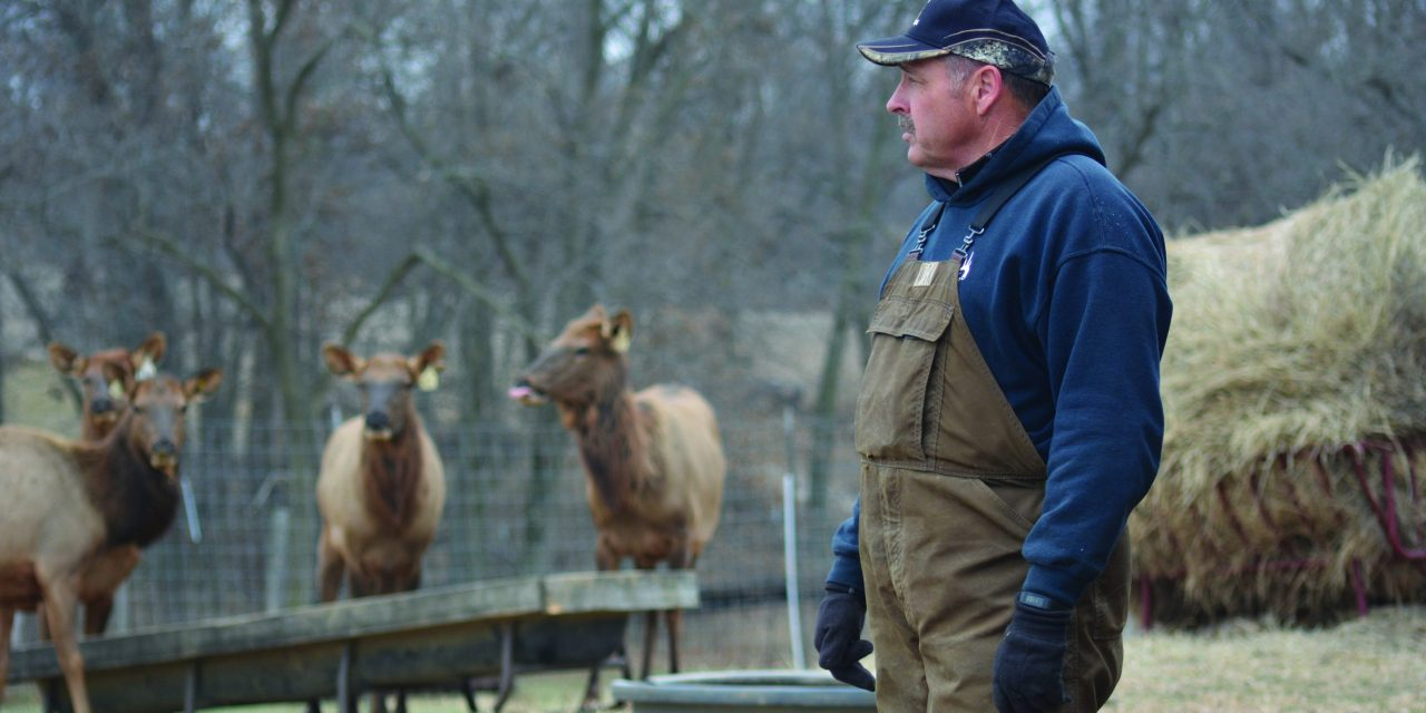 Elk Farmers in the Crosshairs: Regulatory Control of Elk Up to the Courts