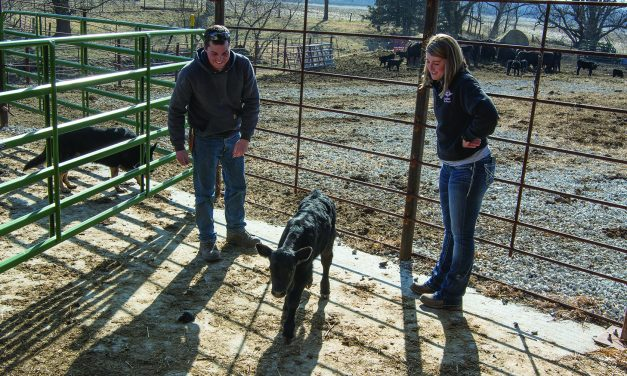 Farming's a Team Effort