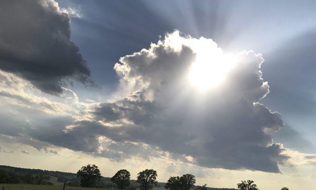 Missouri Farm Bureau Survey Finds Farmers Optimistic Heading into 2019