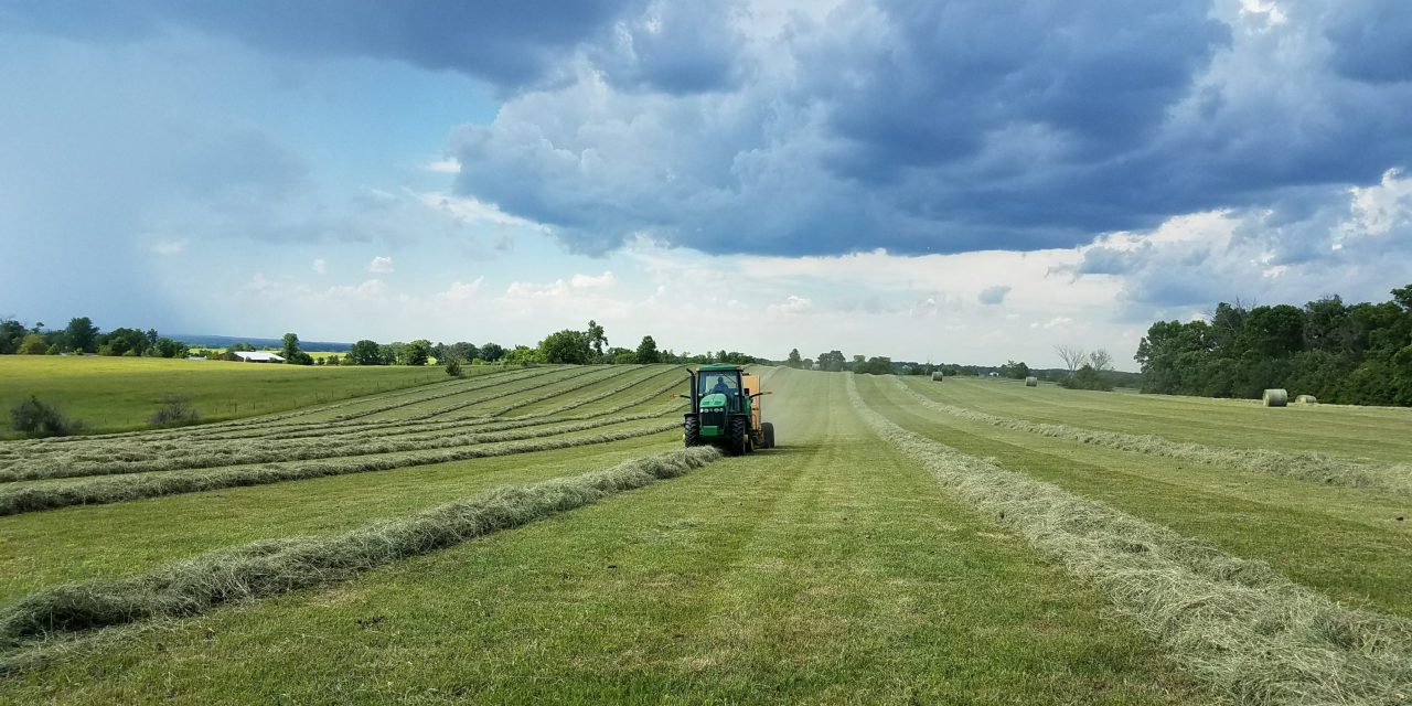 Missouri Farmland Prices Steady Despite Tough Economy