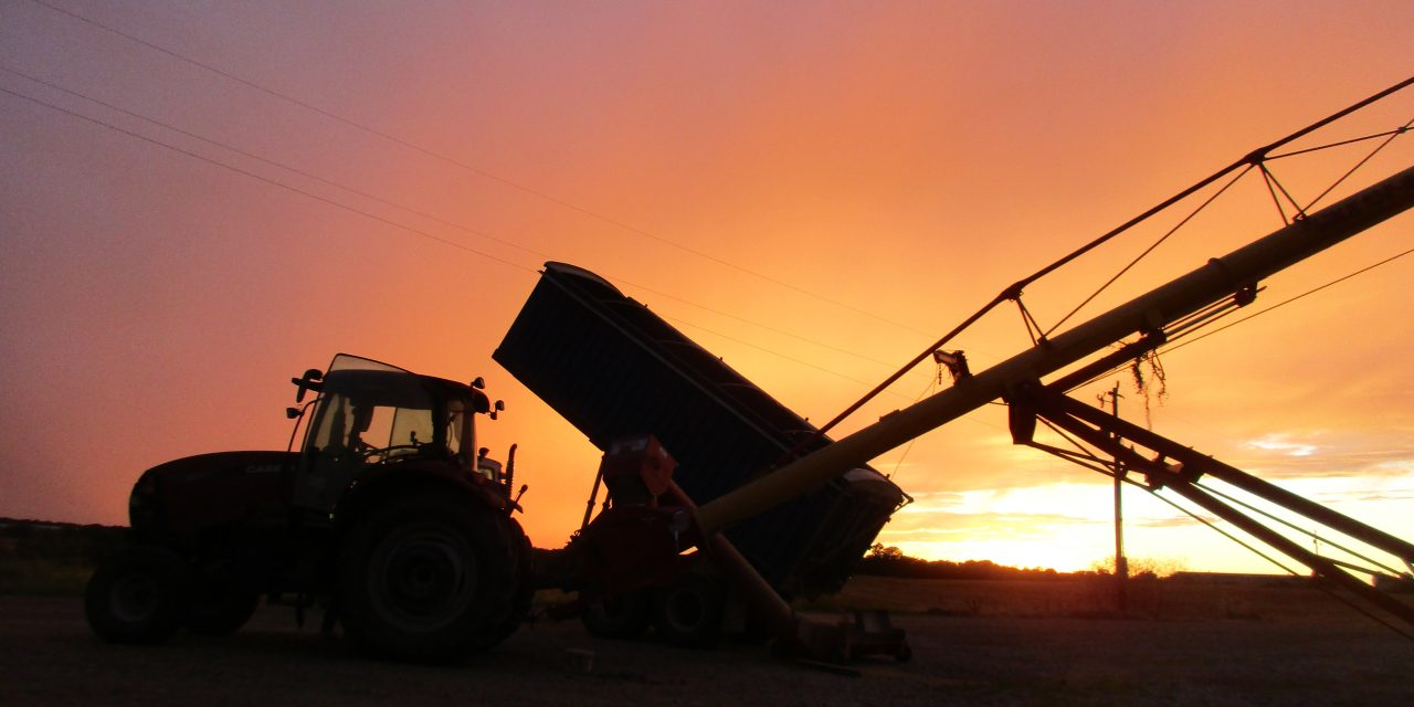 Another Weak Year Predicted for Farm Economy