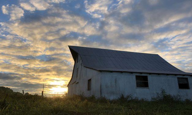New Farm Bill Looks Positive for Missouri Farmers