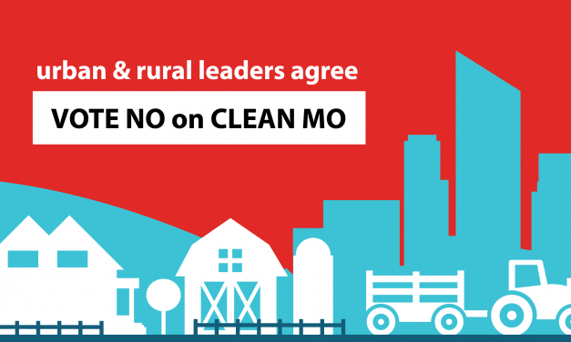 Urban and Rural Leaders Voice Concerns with Amendment 1