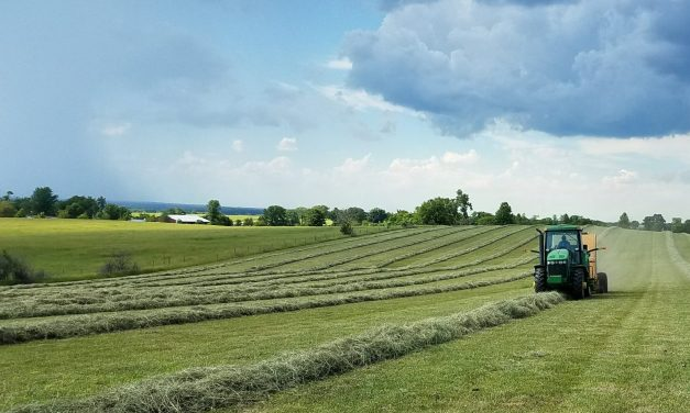 Relief Bill Includes Help for Rural America