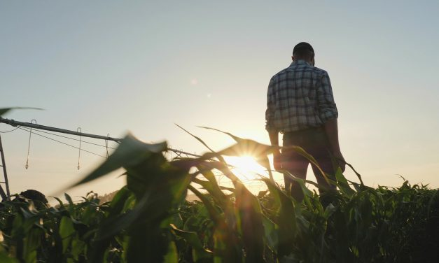 Farming Safely During the Pandemic